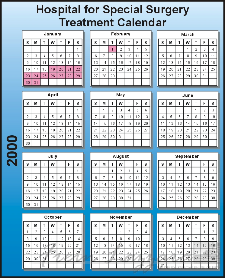 Chronological data – single year calendar chart
